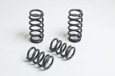 425#/in. front & 850#/in. rear springs shown